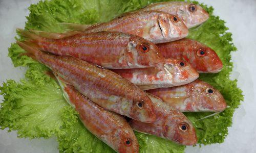 Rouget-barbet | Livraison de poissons • Poissonnerie • Restaurant • Traiteur à Anderlecht