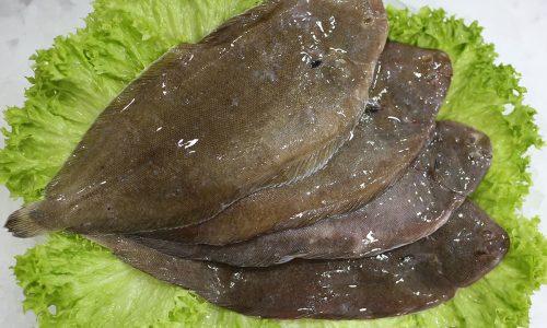 Solette 200/300 | Livraison de poissons • Poissonnerie • Restaurant • Traiteur à Anderlecht