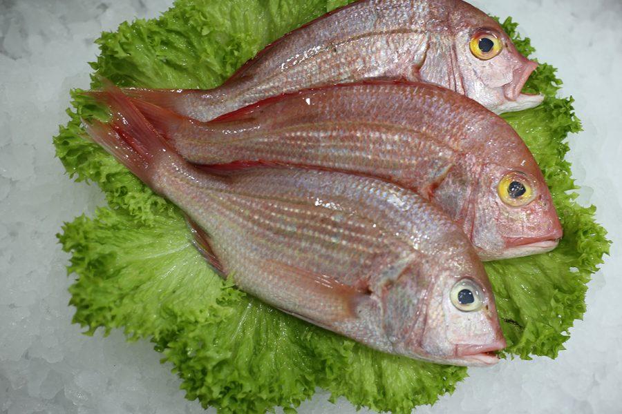 Beau-yeux | Livraison de poissons • Poissonnerie • Restaurant • Traiteur à Anderlecht