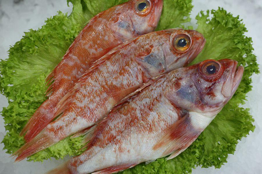 Rascas | Livraison de poissons • Poissonnerie • Restaurant • Traiteur à Anderlecht
