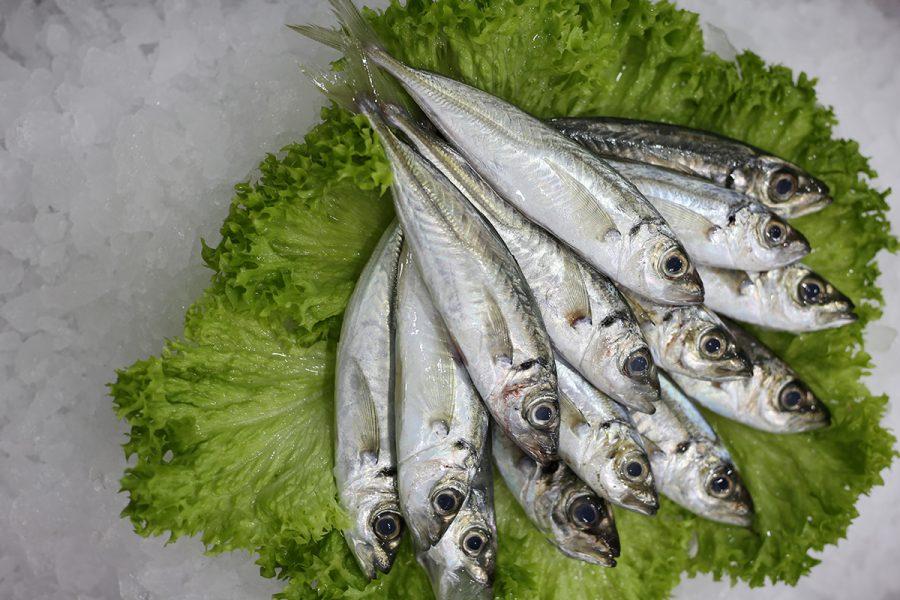 Chinchard p (petit)   Livraison de poissons • Poissonnerie • Restaurant • Traiteur à Anderlecht