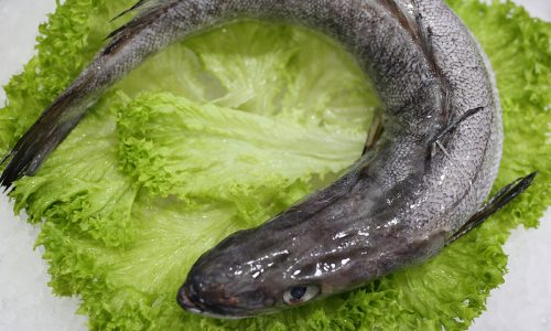Merlan | Livraison de poissons • Poissonnerie • Restaurant • Traiteur à Anderlecht