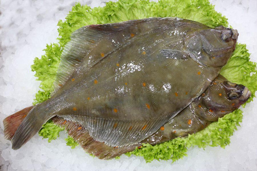 Plie   Livraison de poissons • Poissonnerie • Restaurant • Traiteur à Anderlecht