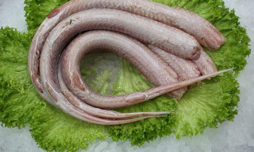 La roussette | Livraison de poissons • Poissonnerie • Restaurant • Traiteur à Anderlecht
