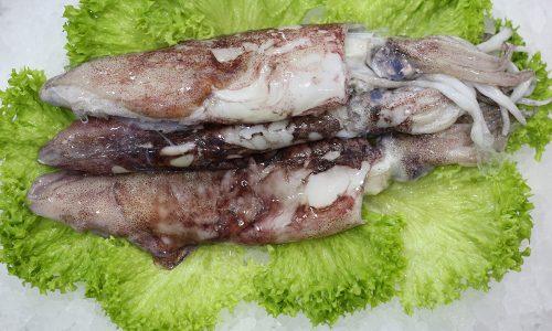 Calamar | Livraison de poissons • Poissonnerie • Restaurant • Traiteur à Anderlecht