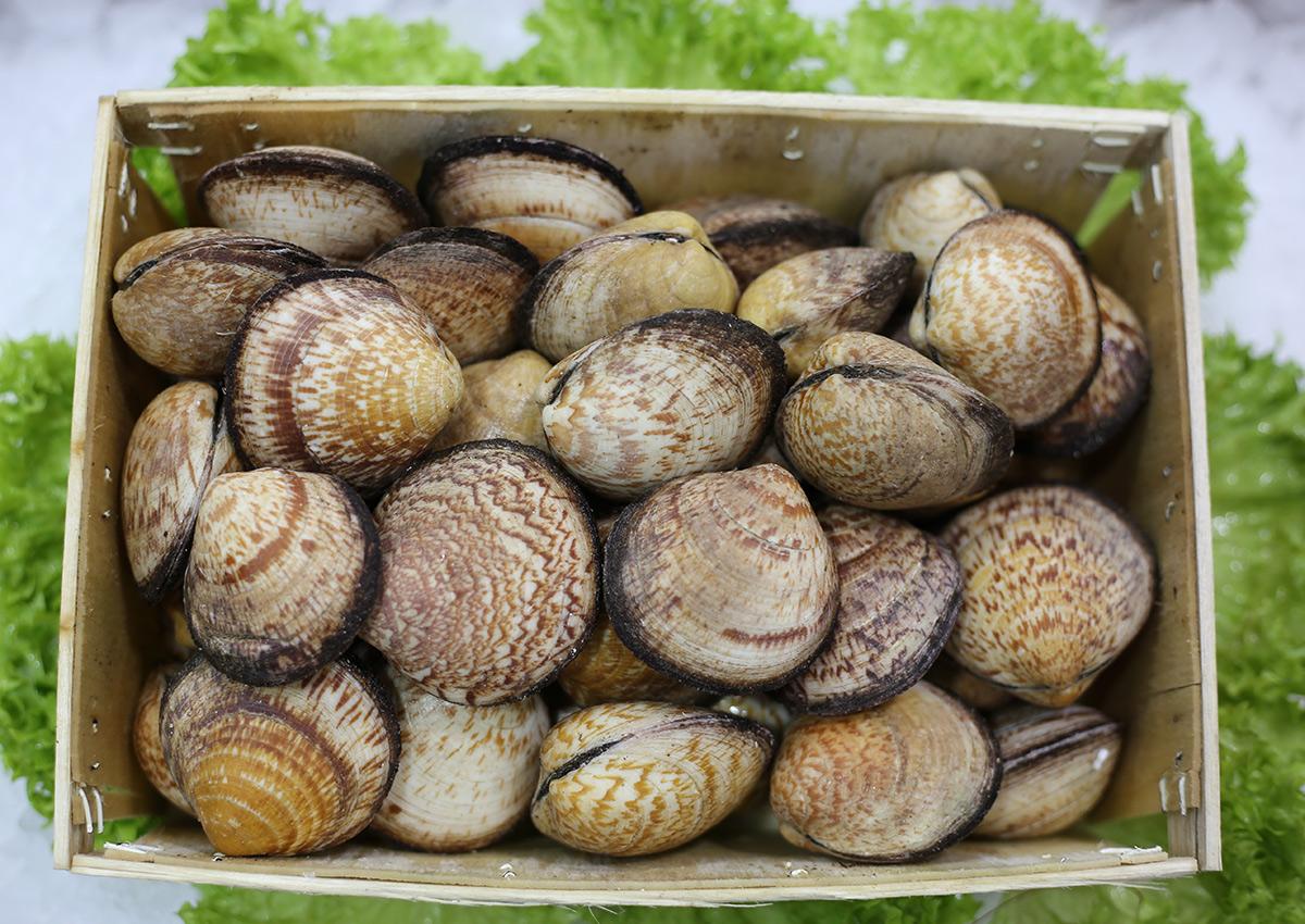 Amande | Livraison de poissons • Poissonnerie • Restaurant • Traiteur à Anderlecht