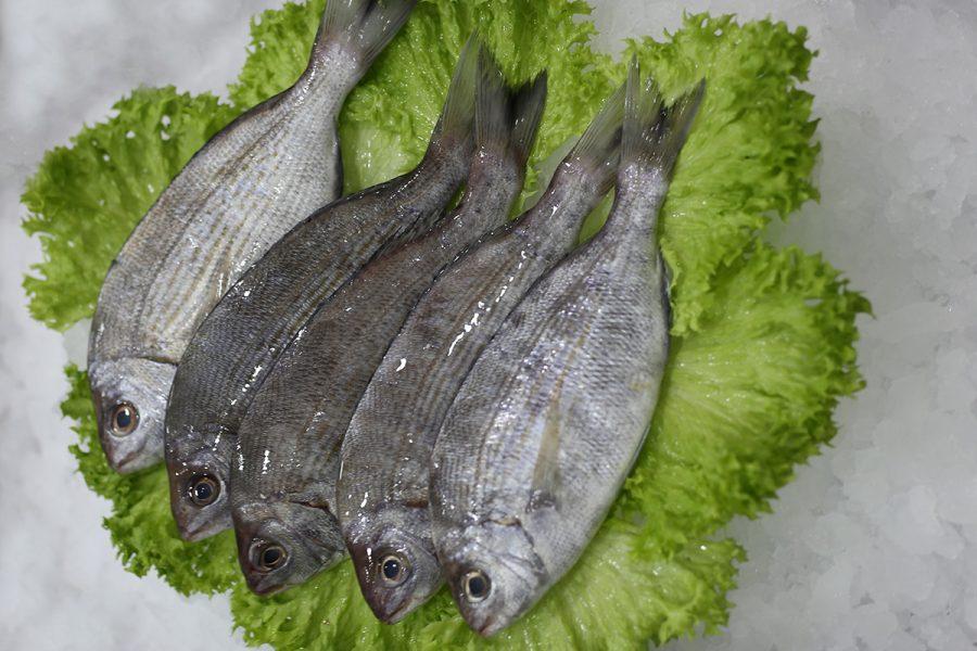 Le cargo | Livraison de poissons • Poissonnerie • Restaurant • Traiteur à Anderlecht