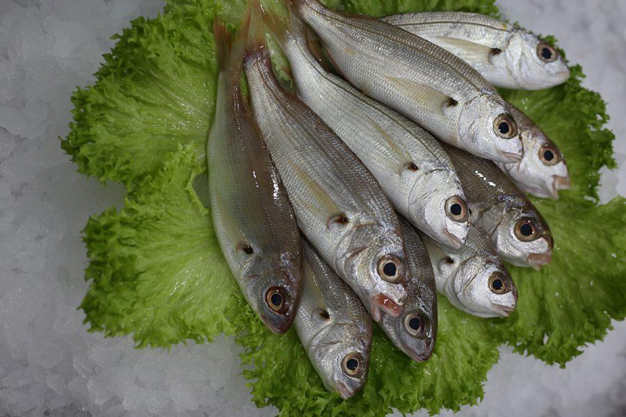 Borabo | Livraison de poissons • Poissonnerie • Restaurant • Traiteur à Anderlecht