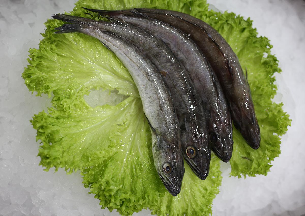 Friture italienne | Livraison de poissons • Poissonnerie • Restaurant • Traiteur à Anderlecht