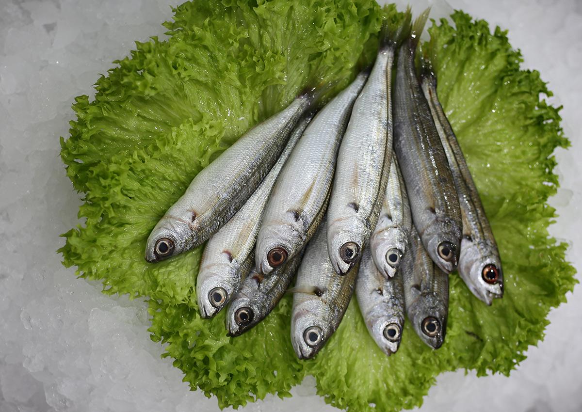 Boga | Livraison de poissons • Poissonnerie • Restaurant • Traiteur à Anderlecht