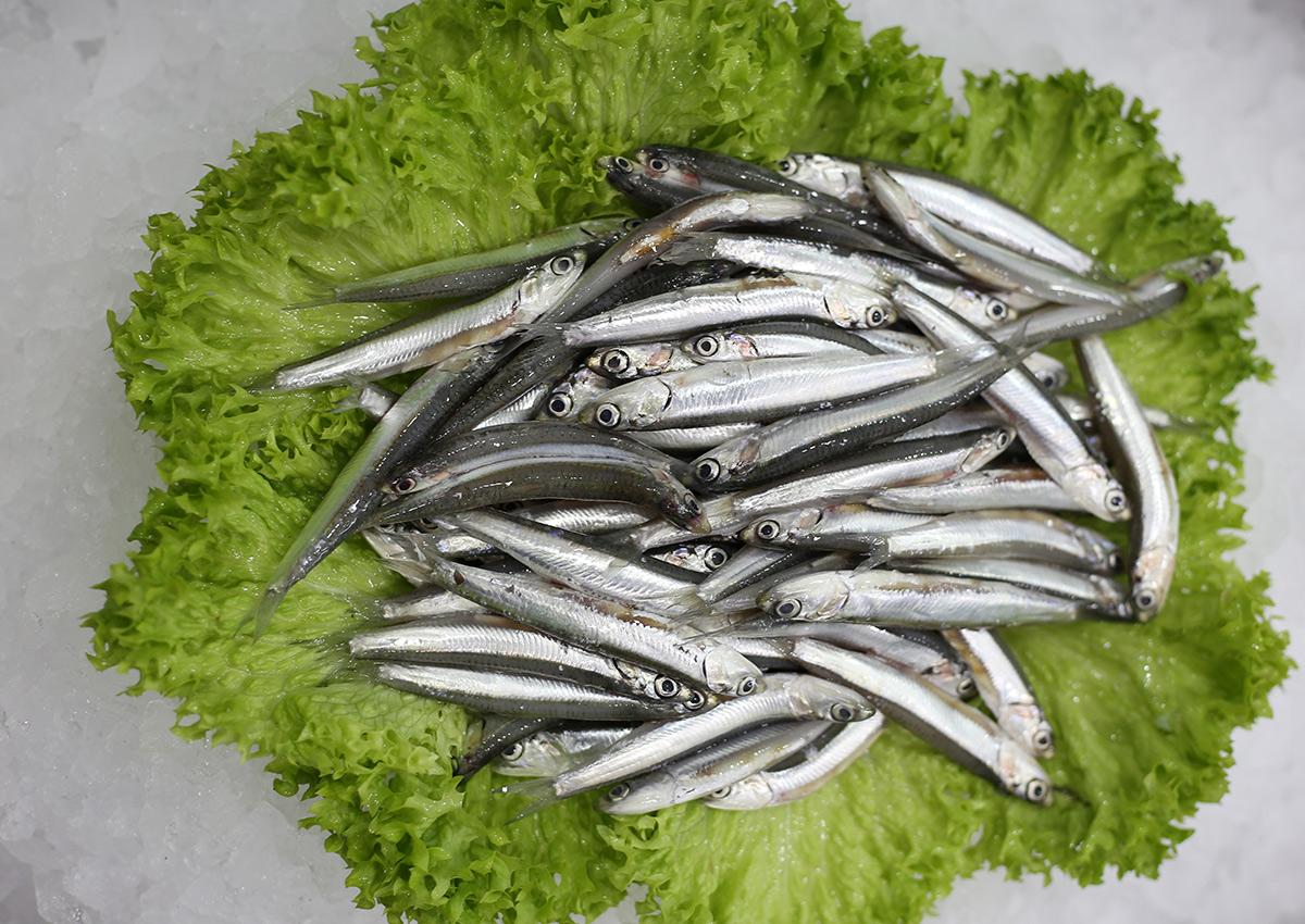 Anchois | Livraison de poissons • Poissonnerie • Restaurant • Traiteur à Anderlecht