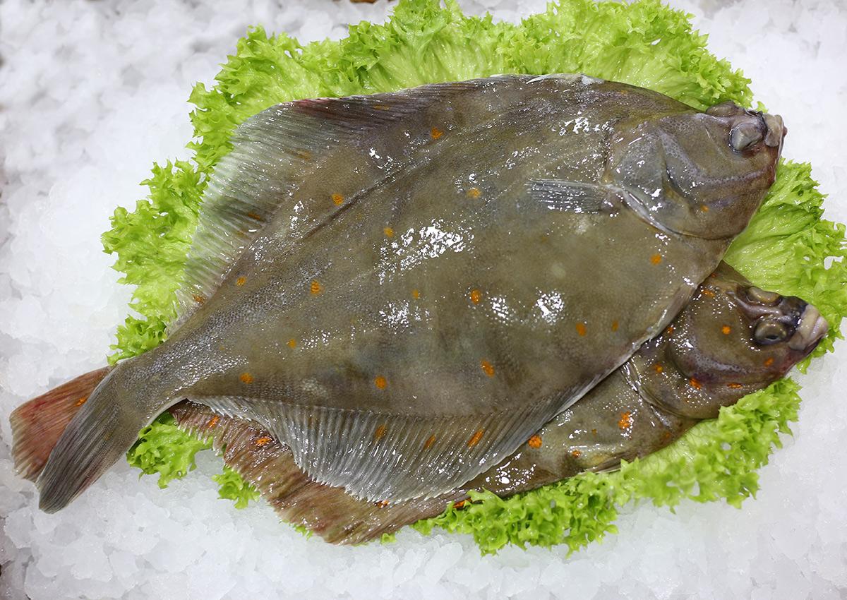 Plie | Livraison de poissons • Poissonnerie • Restaurant • Traiteur à Anderlecht