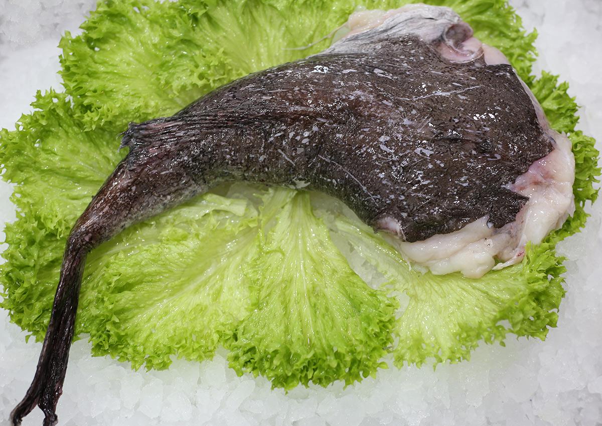 Lotte | Livraison de poissons • Poissonnerie • Restaurant • Traiteur à Anderlecht