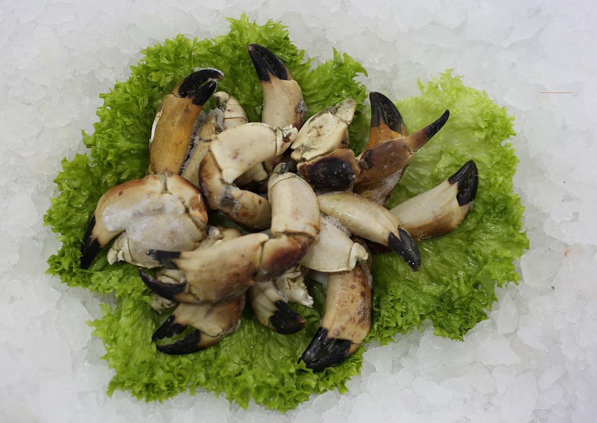 Pinces de crabe | Livraison de poissons • Poissonnerie • Restaurant • Traiteur à Anderlecht